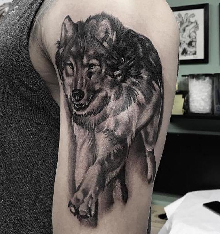 Волк в прыжке