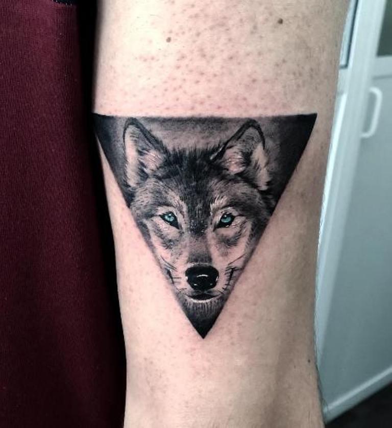 Голова волка