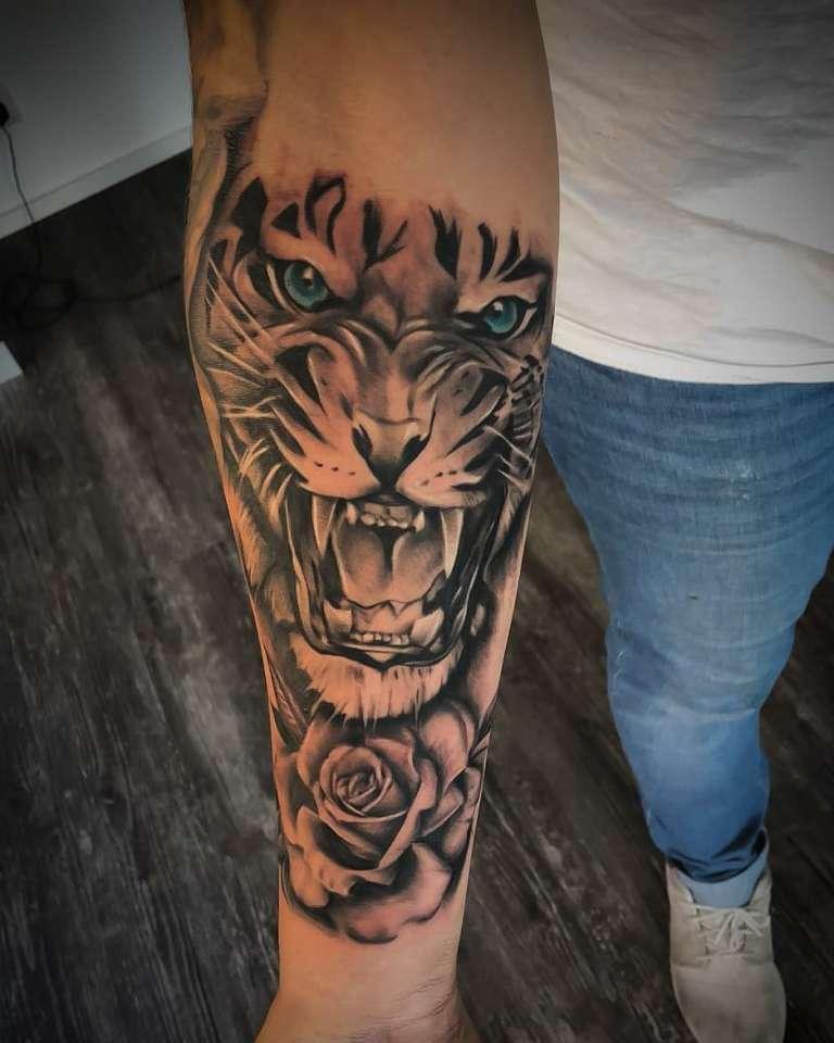 тигр оскал