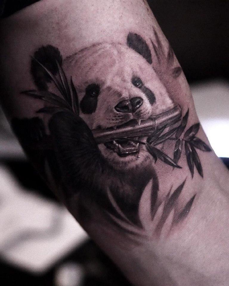 татуировки медведь