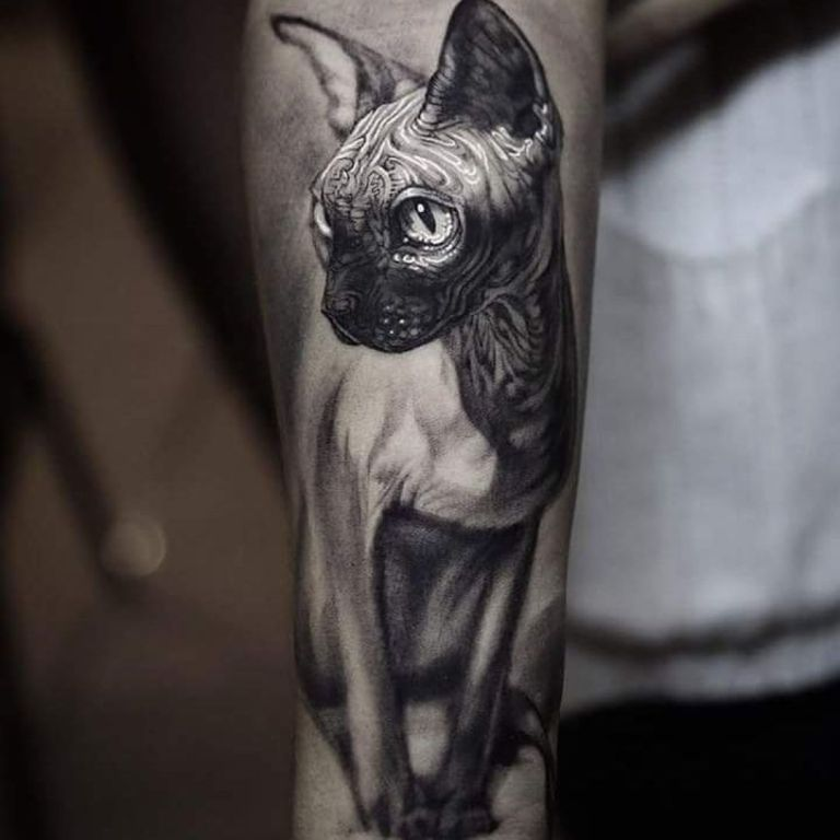 татуировки кот