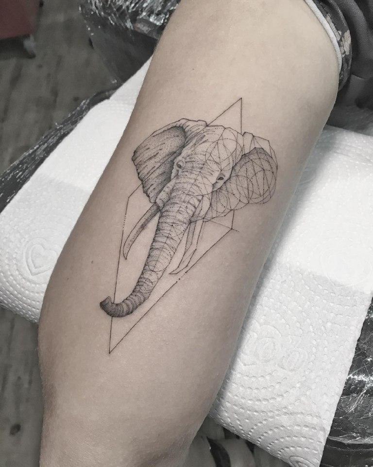 геометрические тату животных