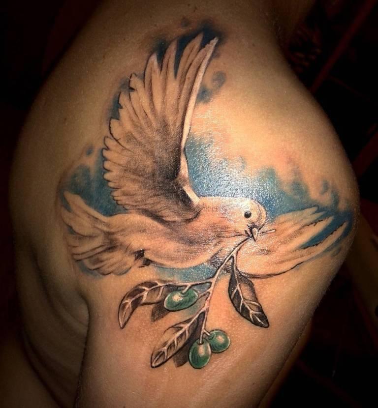 что означает голубь с веточкой в клюве