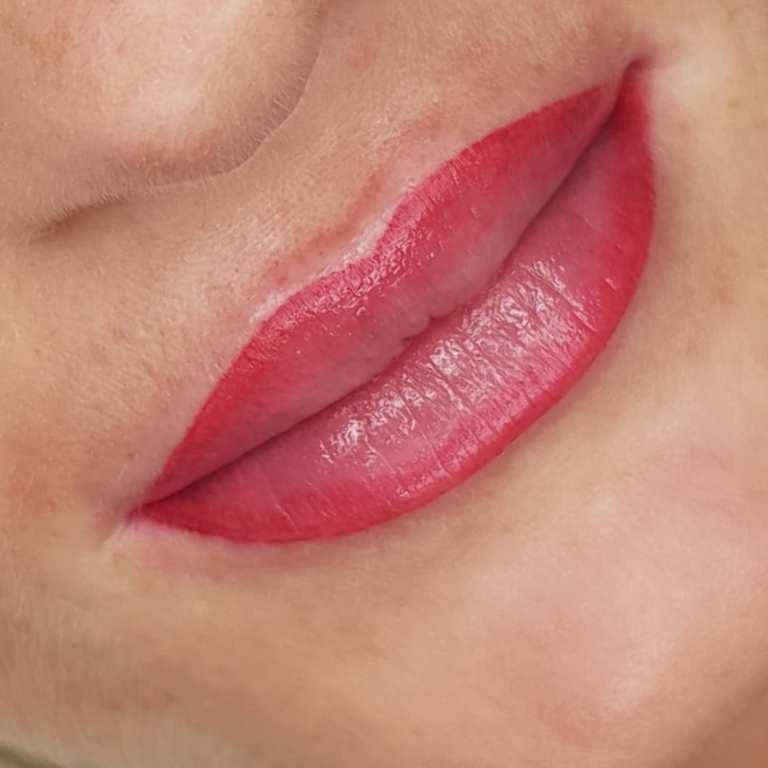 перманентный макияж губ заживление по дням фото