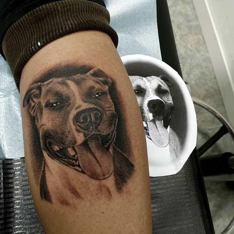 татуировки собаки