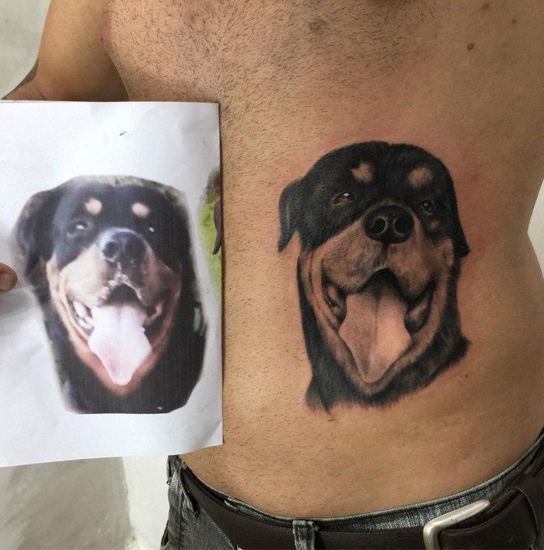 эскиз тату собака