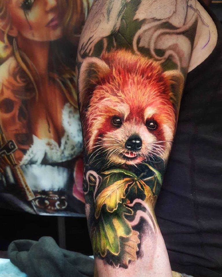 красная панда эскиз
