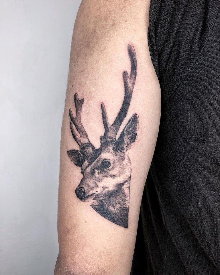 татуировка олень значение