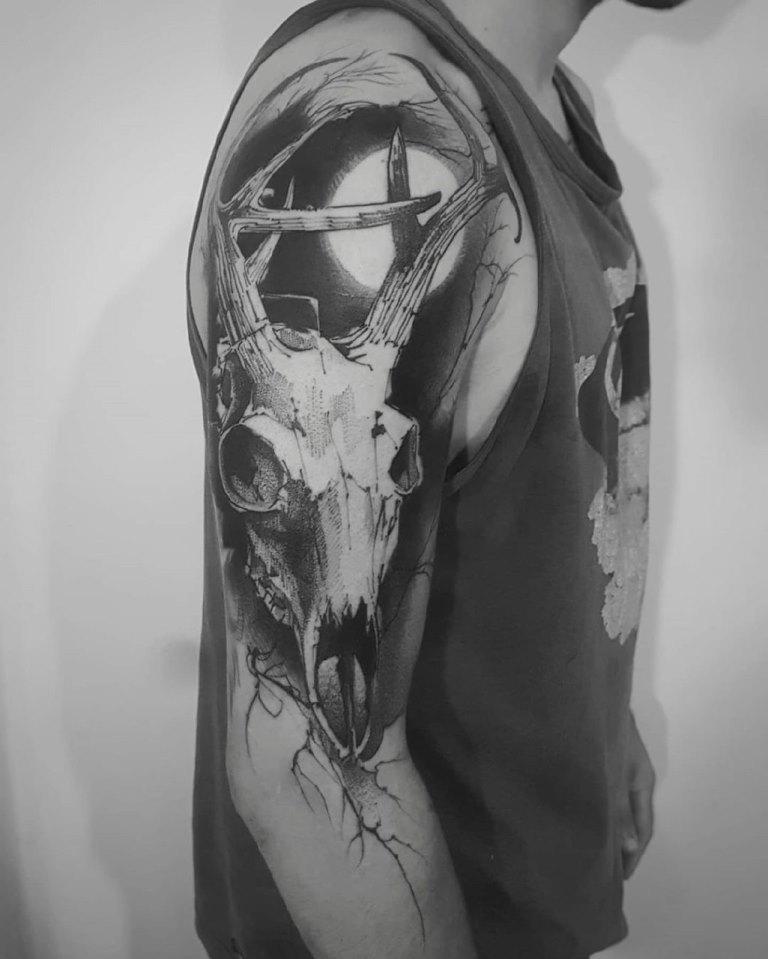 череп оленя