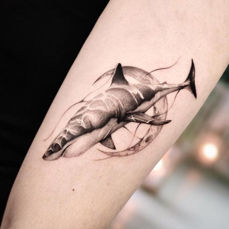 тату акула