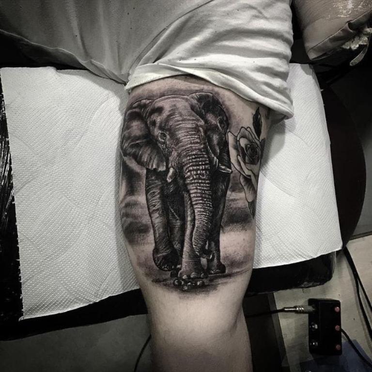тату слон на руке