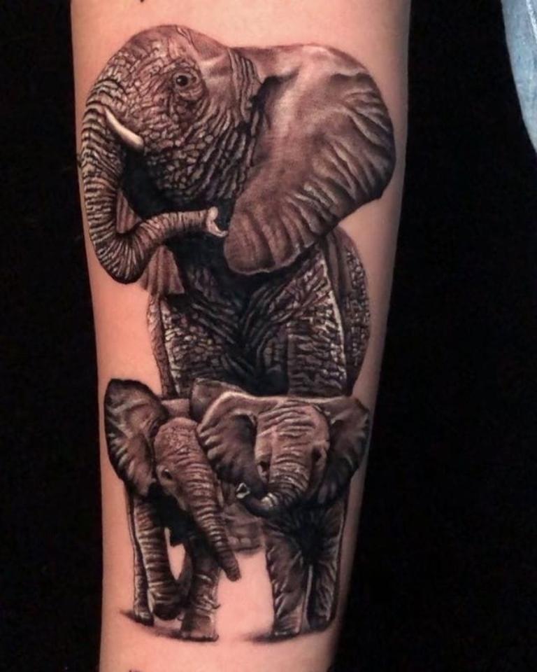 что значит слон